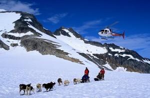 book-tour-summer-glacier-dogsledding