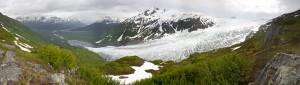 harding_icefield_trail1200